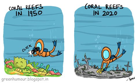 Image result for coral bleaching cartoon